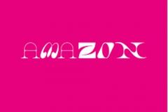 amazon_TDW2021